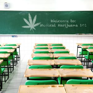 MMJ/CBD Additional Education